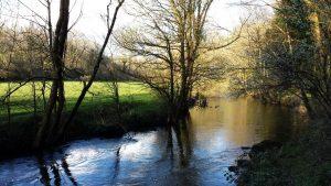 Quimper Stangala rivière odet